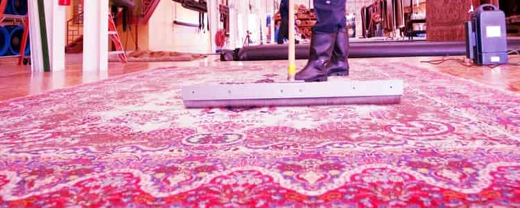 Best Rug Cleaning Perth